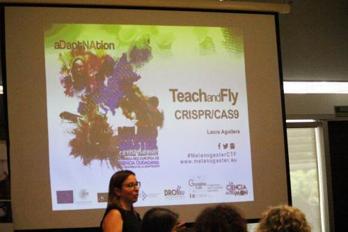 MCTF Web 2020 ACTIVITIES Teach and Fly 2018 Fotos 1