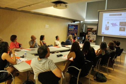 MCTF Web 2020 ACTIVITIES Teach and Fly 2018 Fotos 11