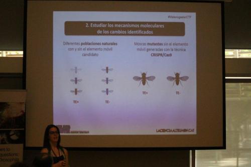 MCTF Web 2020 Teach  Fly 165