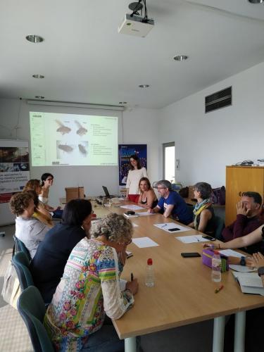 MCTF Web 2020 ACTIVITIES Teach and Fly Fotos 9