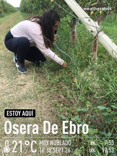 MCTF Web 2020 ESCUELA Fuentes Ebro 2018 2