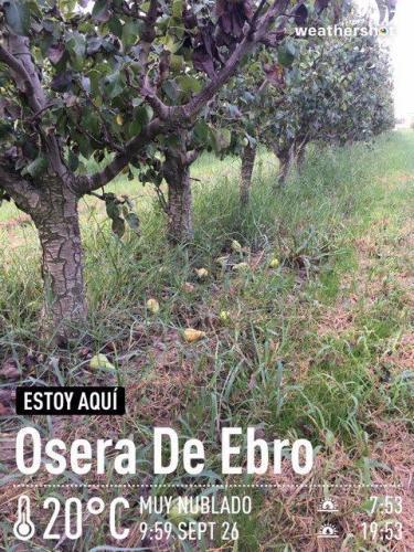 MCTF Web 2020 ESCUELA Fuentes Ebro 2018 3