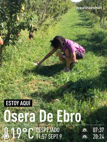 MCTF Web 2020 ESCUELA Fuentes Ebro 2019 1