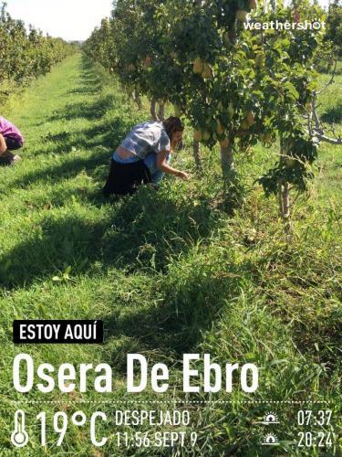 MCTF Web 2020 ESCUELA Fuentes Ebro 2019 2