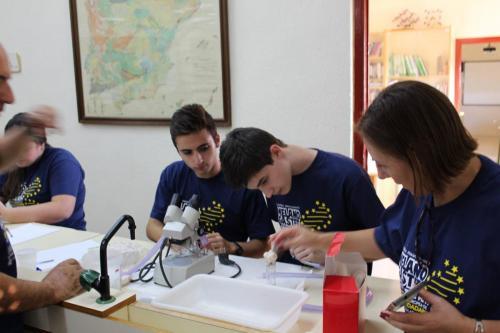 MCTF Web 2020 Post CC Brilla Galería Fb Tomelloso15